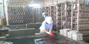 sản xuất gạch bông