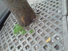 Gạch trồng cỏ - gạch số 8 lát gốc cây